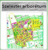 Szelestei Arborétum webes térinformatikája